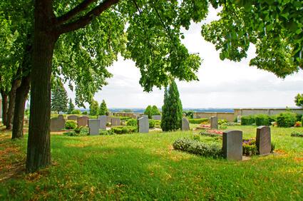 Friedhof unter Bäumen