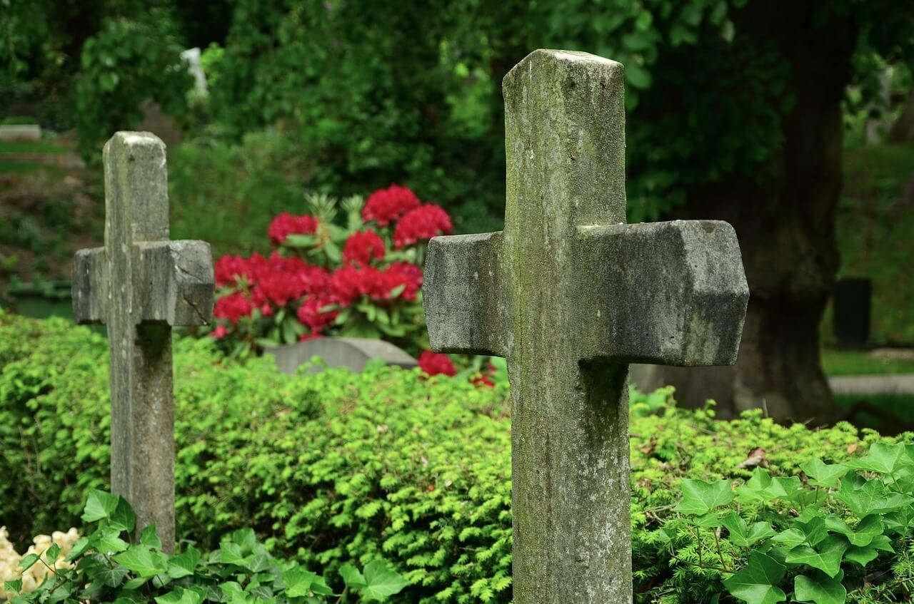 Steinkreuze vor einer Hecke auf dem Friedhof