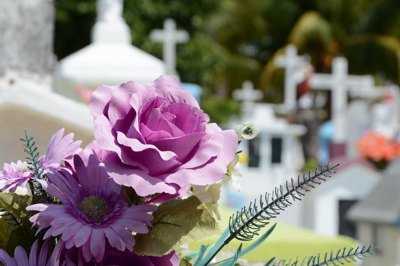 Lila Blüten mit Friedhofskreuzen im Hintergrund